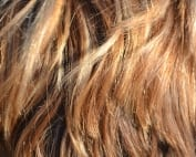 Mitos pelucas: no se notan y no vuelan